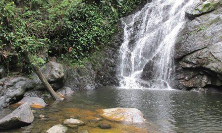 Paraíso de Campo Grande