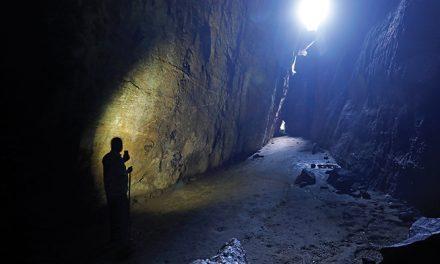 Bat cavernas